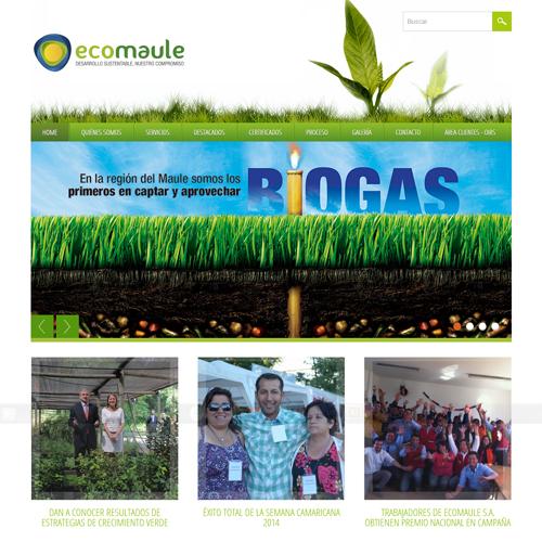 PROYECTO DE COMUNICACIÓN WEB ECOMAULE