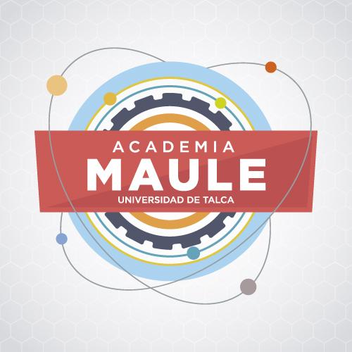 ASESORÍA DE COMUNICACIÓN ACADEMIA MAULE